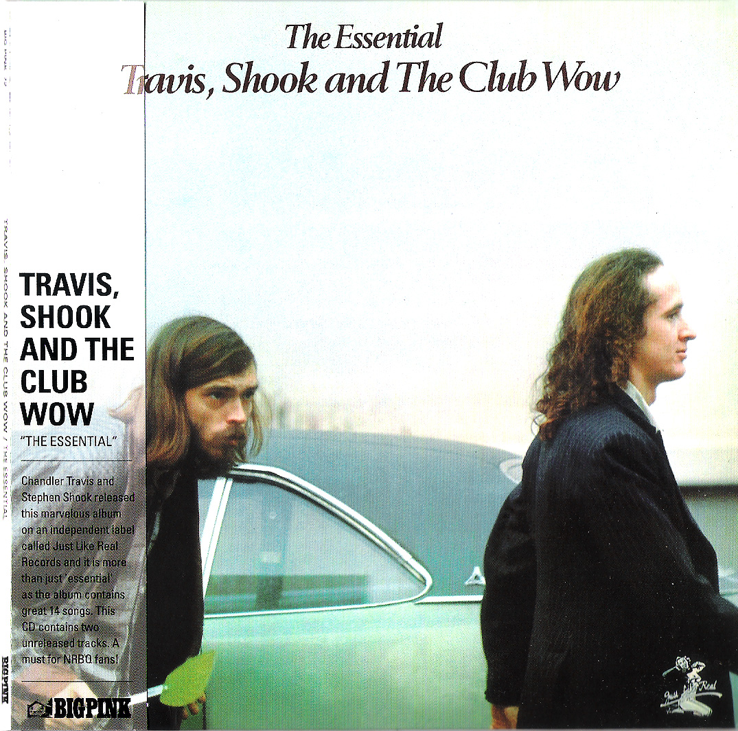 artist travis shook title the essential travis shook and the